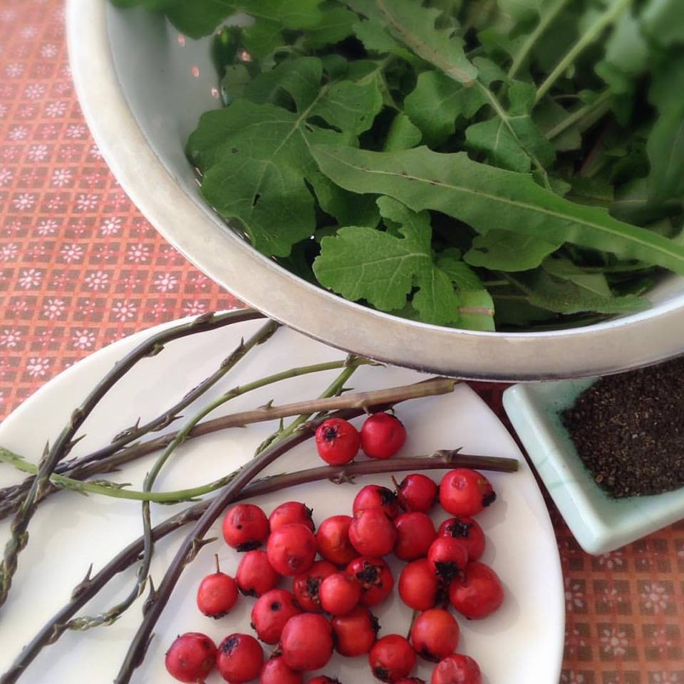 wild hawthorn, asparagus, and edible greens