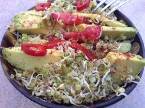 sprouted wild mustard seeds with avocado salad